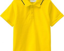 name it Vallo SS Polo (Empire Yellow)